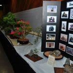 2015 Langley Artisan Show 203