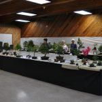 2015 Langley Artisan Show 219